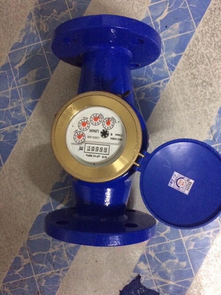 Đồng hồ nước Unik Dn50